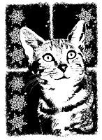 Magenta - Cling Rubber Stamp - Cat of the Season - Winter 2011 Pearl Large