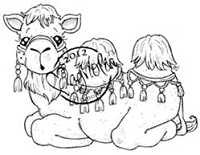 Magnolia - Cling Mounted Rubber Stamp - Jacob The Camel