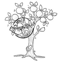 Magnolia - Cling Mounted Rubber Stamp - Paradise
