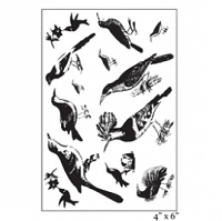 Maya Road - Clear Stamp - Ornate Feathered Friends Stamp Set