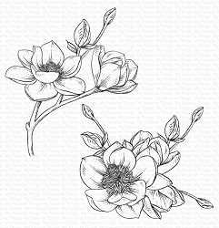 My Favorite Things - Cling Rubber Stamp - Magnolia Blossoms
