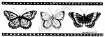 Northwoods Wood-Mounted Rubber Stamp Butterfly Filmstrip
