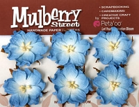 Mulberry Street Wild Roses