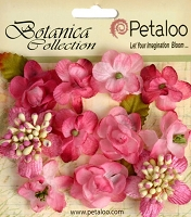 Petaloo - Botanica Collection - Botanica  Mini's X 11 - Fuchsia