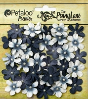 Petaloo - Penny Lane Mini Daisy Pearl Petites - Black (40 pcs)