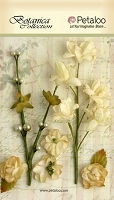 Petaloo - Botanica Collection - Floral Ephemera - Ivory