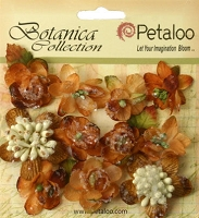 Petaloo - Botanica Collection - Sugared Minis - Mocha :)