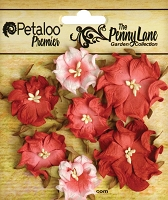 Penny Lane Mini Wild Roses