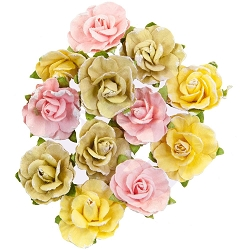 Prima - Fruit Paradise Collection Flowers - Sweet Grapefruit