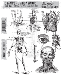 Stamper's Anonymous / Tim Holtz - Cling Mounted Rubber Stamp Set - Cadaverous
