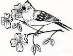 Rubber Stamp Avenue-Cling Stamp-Birds on Floral Branch