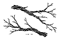 Designs by Ryn - Stencil - Flowing Branches (6