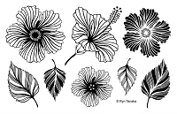 Designs by Ryn - Unmounted Rubber Stamp Sheet - Hibiscus (5.5