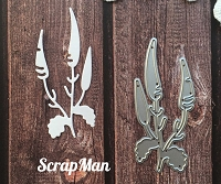 ScrapMan Dies - Meadow Grass