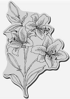 Stampendous Cling Mounted Rubber Stamp - Star Lilies
