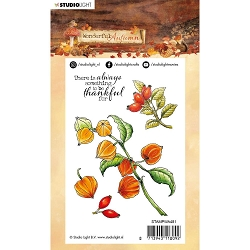 Studio Light - Wonderful Autumn - Rosehips & Physalis Clear Stamp #481
