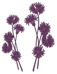 Sue Wilson Designs - Die - Finishing Touches Collection - Dandelion Posies