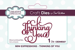 Sue Wilson Designs - Die - Mini Expressions - Thinking of You