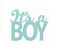 Sue Wilson Designs - Die - New Arrival Collection - It's A Boy