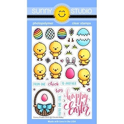 Sunny Studio - Clear Stamp - Chickie Baby