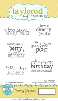 Taylored Expressions - Cling Mounted Rubber Stamp - Berry Special