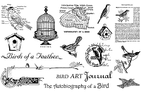 TJ Designs - Cling Mounted Rubber Stamp Collection by TweetyJill - Birds of a Feather