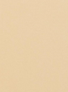Tonic Studios - Craft Perfect Cardstock - 5 sheets Pearlescent Ivory Sheen 8.5