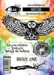 Visible Image - Clear Stamp - Night Owl Stamp Set