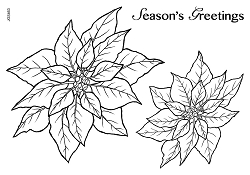 Woodware Craft - Clear Stamp - Poinsettia