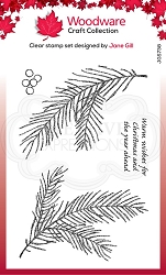 Woodware Craft - Clear Stamp - Sketchy Pine Branch