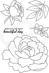 Woodware Craft - Clear Stamp - Peony Blooms