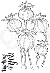 Woodware Craft - Clear Stamp - Poppy Heads