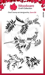 Woodware Craft - Clear Stamp - Wood Vetch
