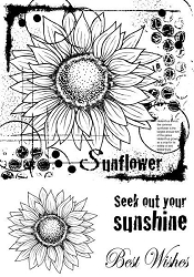 Woodware Craft - Clear Stamp - Sunflower Sketch