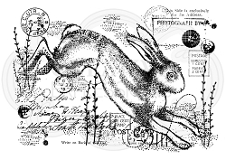 Woodware Craft - Clear Stamp - Vintage Hare