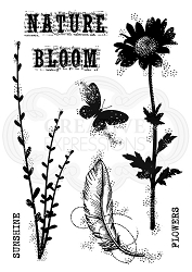 Woodware Craft - Clear Stamp - Blooming Nature