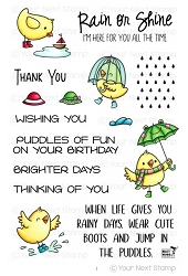 Your Next Stamp - Clear Stamp - Puddles of Fun