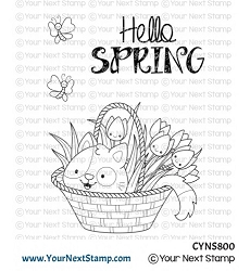 Your Next Stamp - Clear Stamp - Spring Kitten