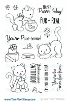 Your Next Stamp - Clear Stamp - Jessica's Kitten