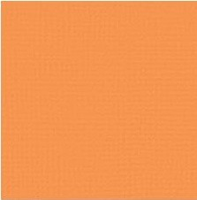 "American Crafts - 12"" x 12"" Textured Cardstock - Goldfish"