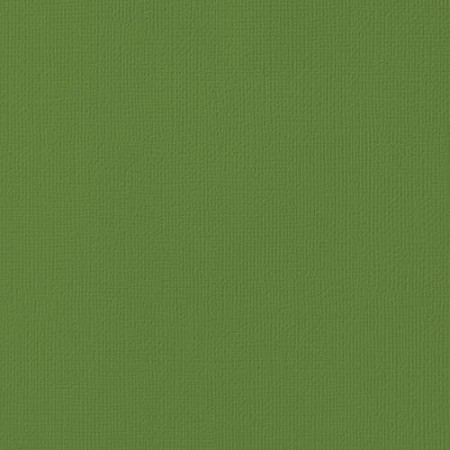 "American Crafts - 12"" x 12"" Textured Cardstock - Spinach"