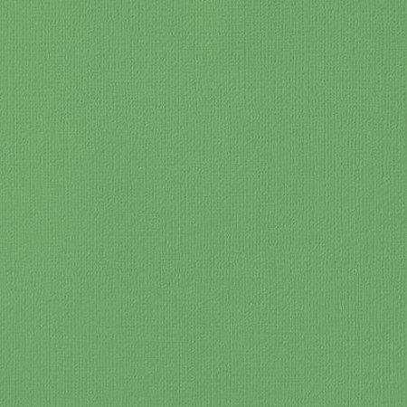 "American Crafts - 12"" x 12"" Textured Cardstock - Moss"