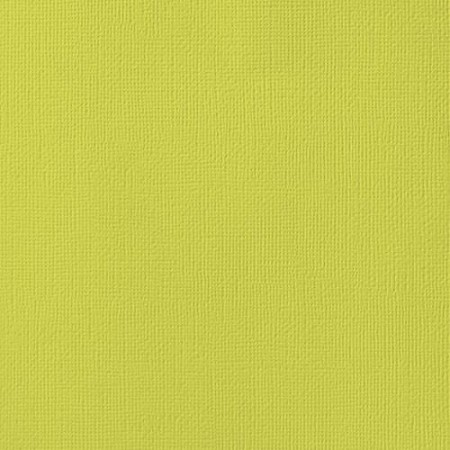 "American Crafts - 12"" x 12"" Textured Cardstock - Limeade Weave"