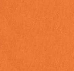 "American Crafts - 12"" x 12"" Smooth Cardstock - Apricot"