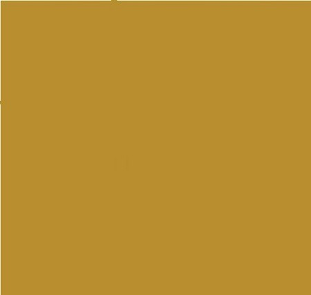 "Bazzill Basics Paper - 12""x12"" Heavy Weight Cardstock ( 1 Sheet ) - Card Shoppe - Gold Coins"