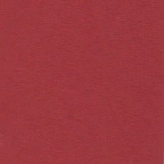 "Bazzill - 12""x12"" Cardstock (Fourz) - Red Rock"