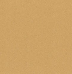 Bazzill Cardstock (classic texture)-Beach