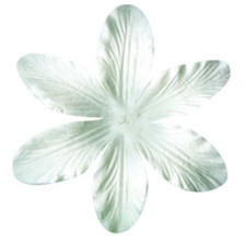 Bazzill-Paper Flowers-Flowers & Leaves-Lily-White