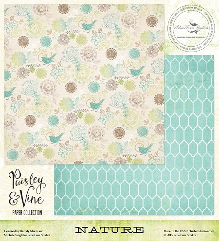"Blue Fern Studios - Paisley & Vine Collection - 12""x12"" Double Sided Cardstock - Nature"