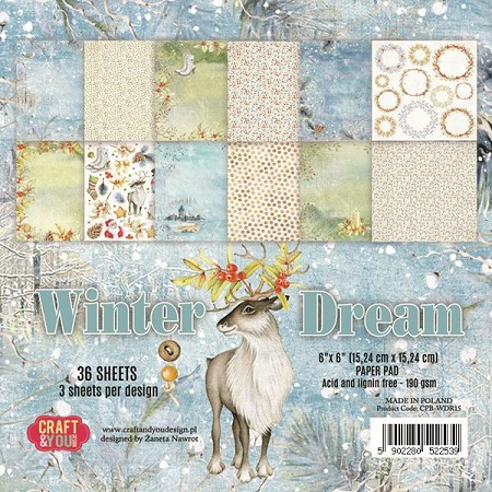 Craft & You - Winter Dream 6x6 Paper Pad